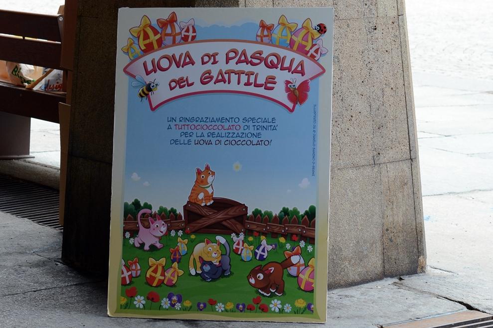 Avvistati gatti di cioccolato a Cuneo….